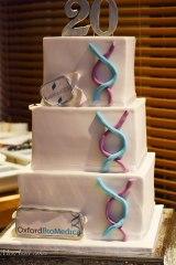 corporate cake oxford
